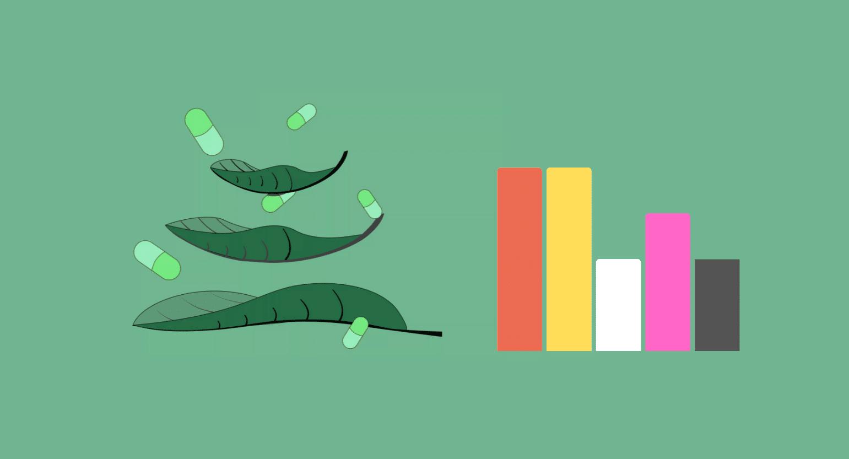 Green Sumatra Kratom: What Makes This Strain So Popular?