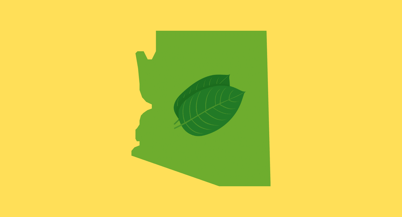 Is Kratom Legal in Arizona?