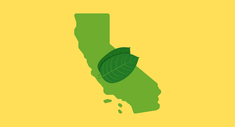 Where to Buy Kratom in California: Is It Legal?