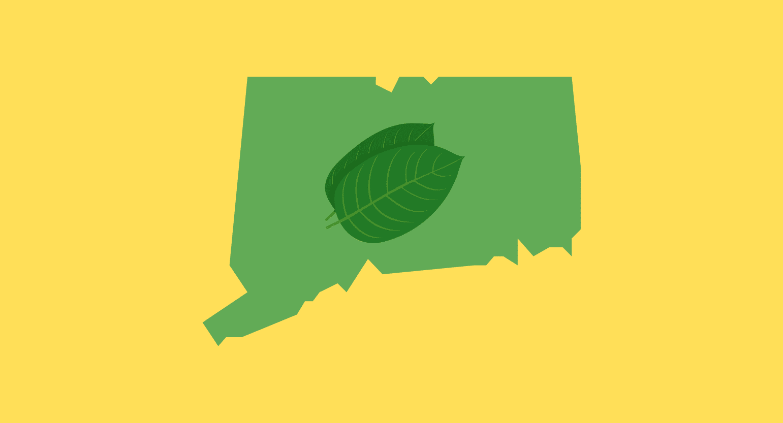 Is Kratom Legal in Connecticut?