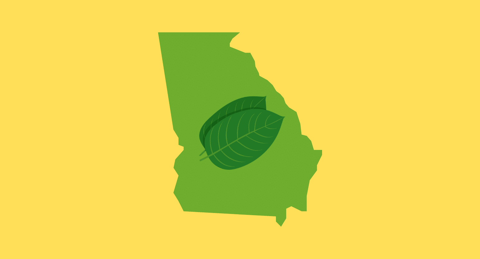Where to Buy Kratom in Georgia: Is It Legal & Safe?
