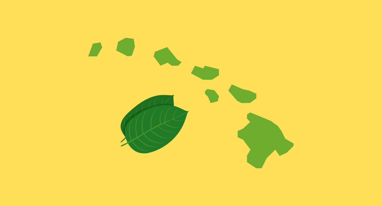 Is Kratom Legal In Hawaii? Best Local & Online Vendors