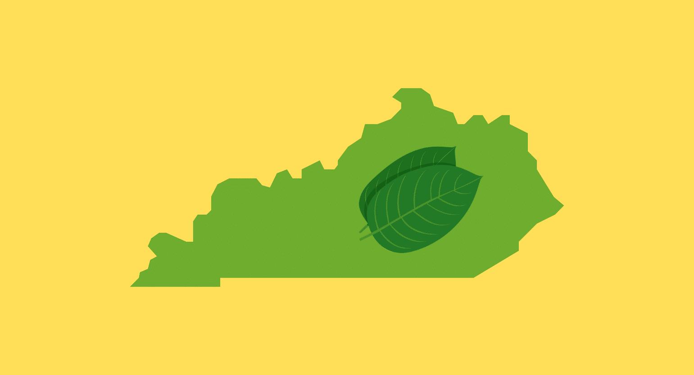 Is Kratom Legal in Kentucky?
