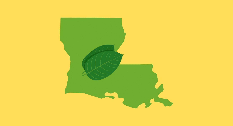 Is Kratom Legal in Louisiana?