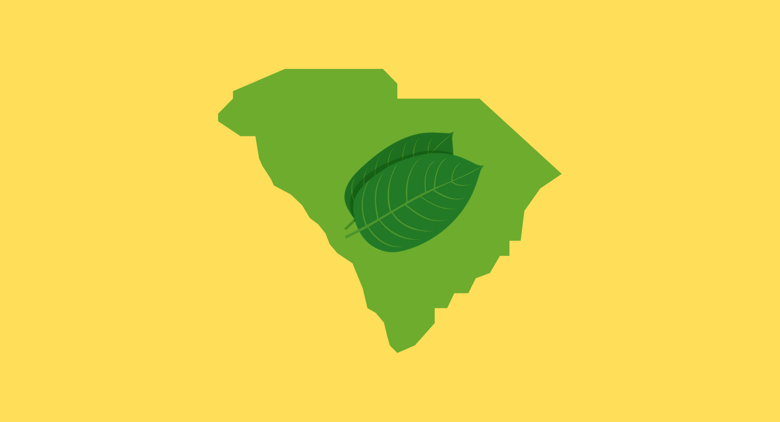 Is Kratom Legal in South Carolina? Where to Buy Locally & Online