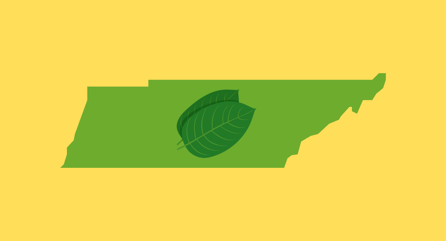 Is Kratom Legal in Tennessee? Best Places to Buy Online & Locally