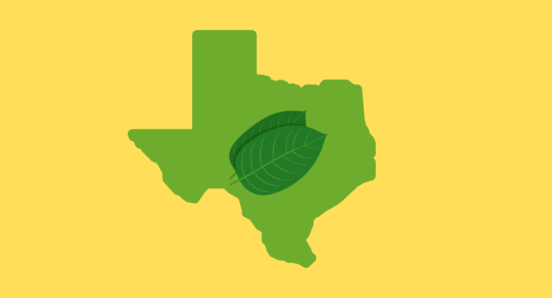 Is Kratom Legal in Texas?