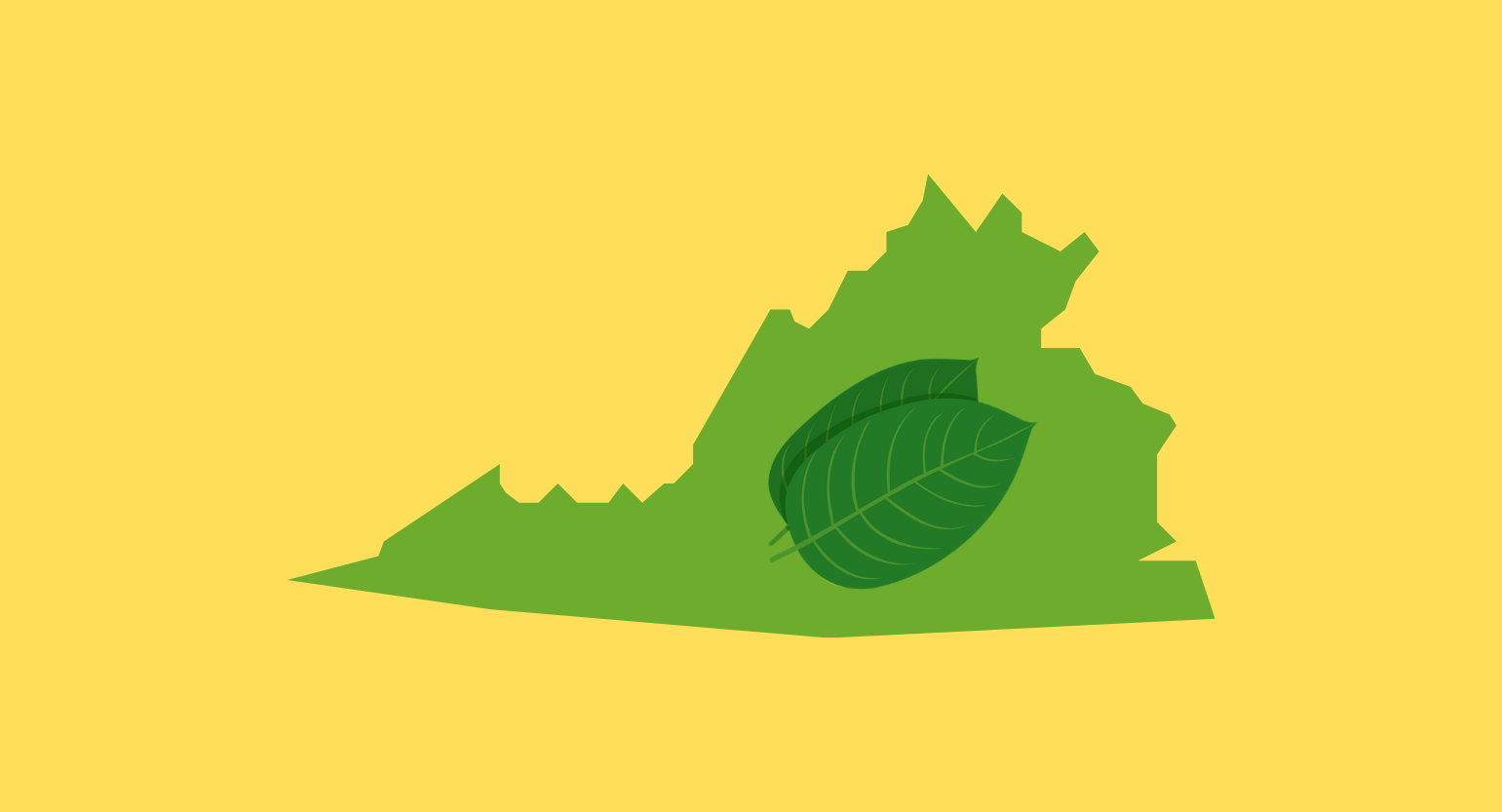 Is Kratom Legal in Virginia? Where to Buy Locally & Online