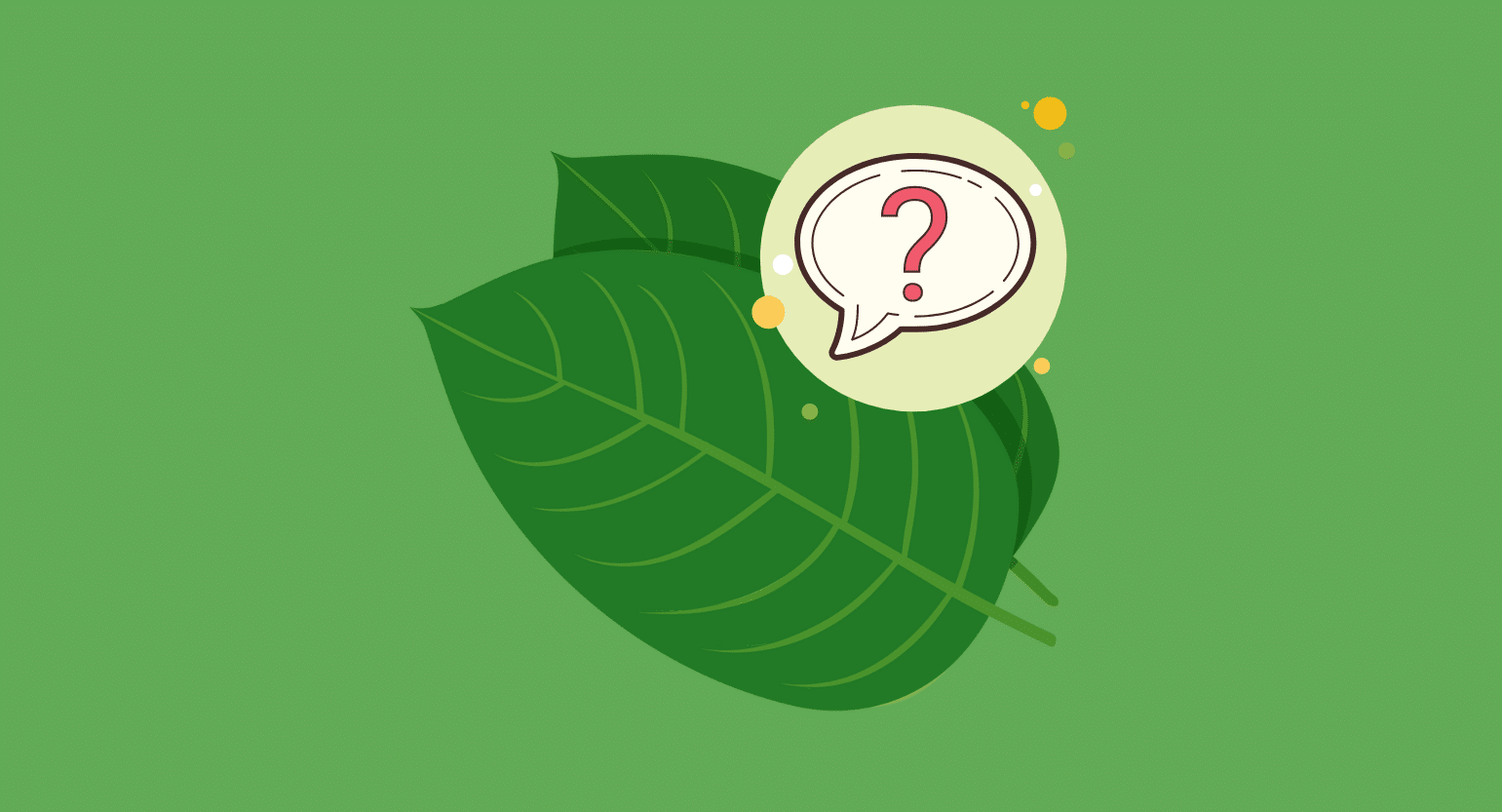 What Is Mitragyna javanica? How Does This Kratom Alternative Compare?