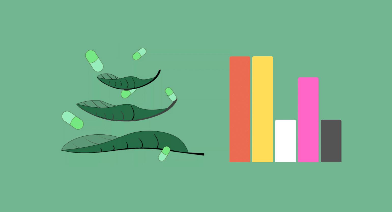 Super Green Indo: Calm, Clean, Energy