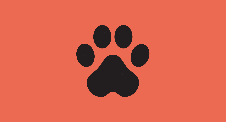Is Kratom Safe for Dogs?